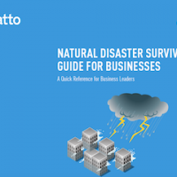 Natural Disaster Survival Guide for Business Cover
